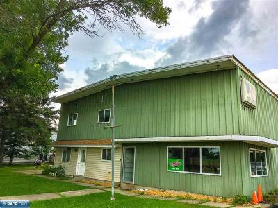 International Falls MN Commercial For Sale: $99,000