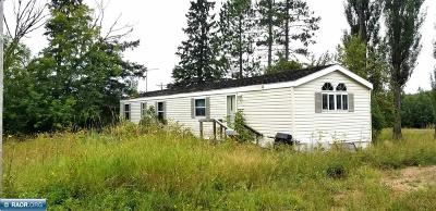 International Falls MN Single Family Home For Sale: $45,000