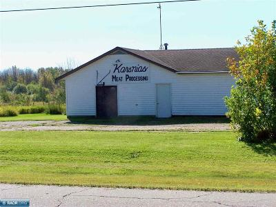International Falls MN Commercial For Sale: $49,900