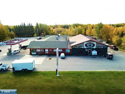 Koochiching County Commercial For Sale: 3202 Hwy 11 E