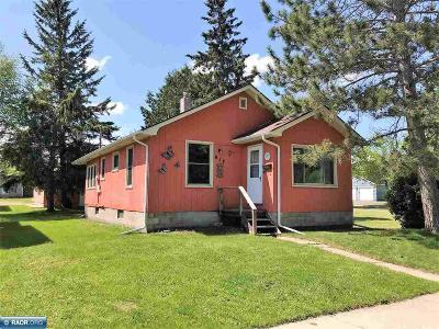 Koochiching County Single Family Home For Sale: 917 8th Street