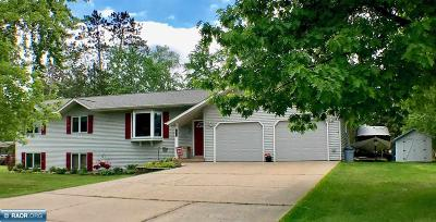 Grand Rapids Single Family Home For Sale: 1220 SW 5th St.