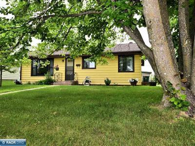 Grand Rapids Single Family Home For Sale: 804 7th Ave NE