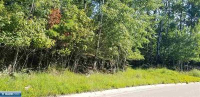Koochiching County Residential Lots & Land For Sale: Outlot 5 Co Rd 138
