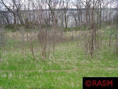 Residential Lots & Land For Sale: 26011 Island Road