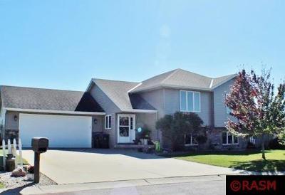 Mankato MN Single Family Home For Sale: $244,900