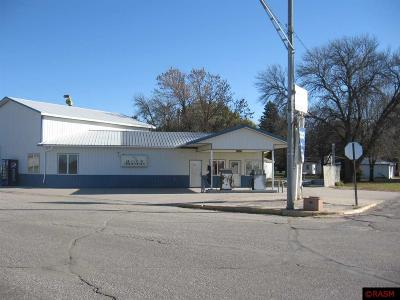 Waldorf MN Commercial For Sale: $42,000
