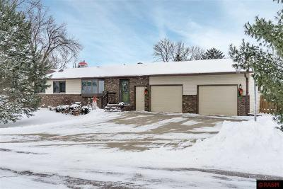 St. Clair MN Single Family Home For Sale: $219,900