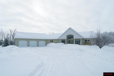 Blue Earth County, Le Sueur County, Rice County, Steele County, Waseca County Single Family Home For Sale: 1101 Clifford Drive