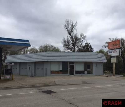 Lake Crystal MN Commercial For Sale: $199,000