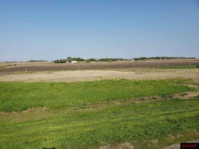 Blue Earth County, Le Sueur County, Rice County, Steele County, Waseca County Residential Lots & Land For Sale: 604 N W Street