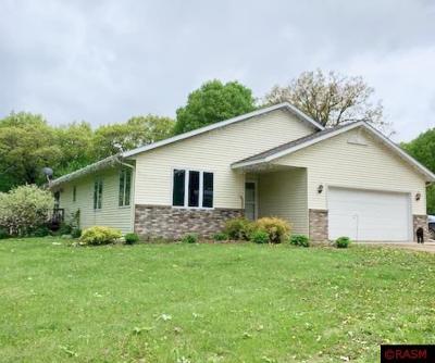 Mankato MN Single Family Home For Sale: $450,000