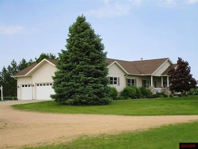 Blue Earth County, Le Sueur County, Rice County, Steele County, Waseca County Single Family Home For Sale: 36436 311th Avenue