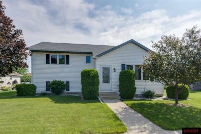 St. Peter Single Family Home For Sale: 1005 Wettergren Street