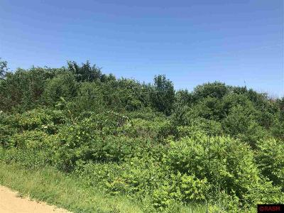 Residential Lots & Land For Sale: Melanie Drive