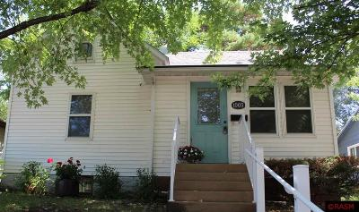 New Ulm Single Family Home For Sale: 1005 S Franklin Street