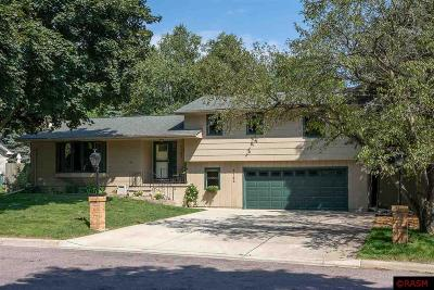 Single Family Home For Sale: 1742 Candi Lane
