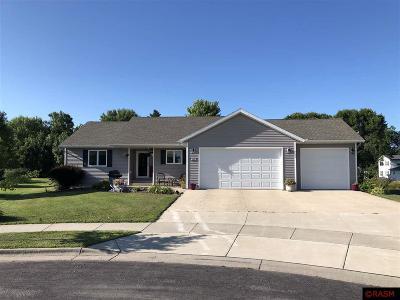 New Ulm Single Family Home For Sale: 1426 Birchwood Drive
