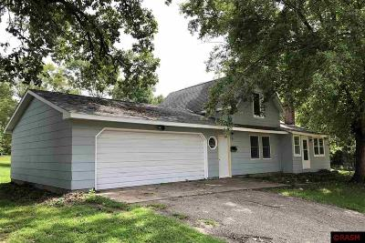 Blue Earth County, Le Sueur County, Nicollet County Single Family Home For Sale: 111 S Jackson Street