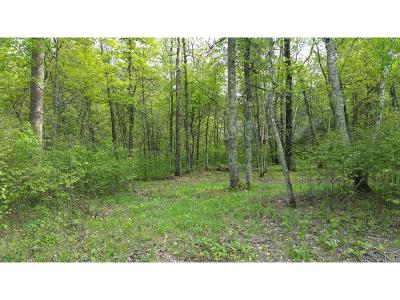 Pequot Lakes Residential Lots & Land For Sale: Lots 1-9 Pillsbury Street