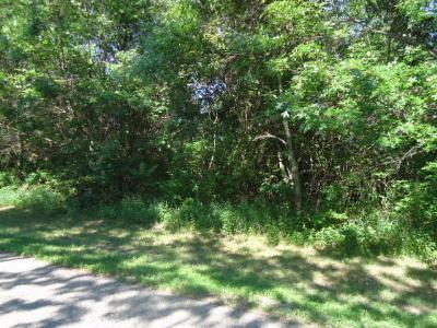 Hager City Residential Lots & Land For Sale: Lot 2 845th Street