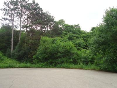 Pepin Residential Lots & Land For Sale: Lot 38 Charland Drive