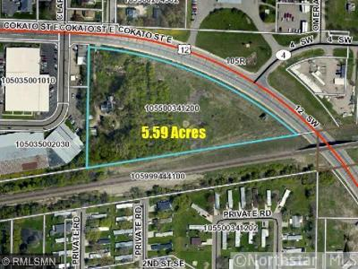 Wright County Residential Lots & Land For Sale: 520 Cokato St (Hwy 12) Street E