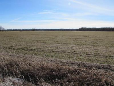 Ramsey Residential Lots & Land For Sale: 88x1 Highway 10