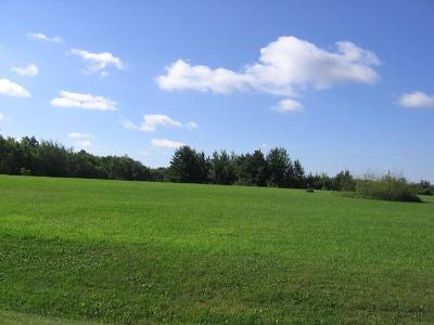 Spring Valley Residential Lots & Land For Sale: Lot 2 Doug Blegen