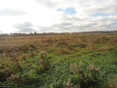 Pine City Residential Lots & Land For Sale: Xxxxx Beroun Crossing Road