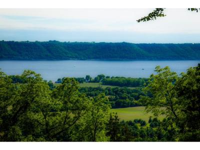 Pepin Residential Lots & Land For Sale: Xxxx Pepin View S