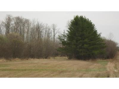 McGregor Residential Lots & Land For Sale: 42868 State Highway 65