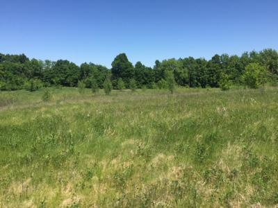 Baldwin Residential Lots & Land For Sale: 2124 21st Avenue