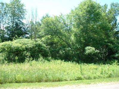 Spring Valley Residential Lots & Land For Sale: Lot 3 5.01ac Doug Blegen Drive