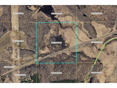 Brainerd Residential Lots & Land For Sale: Tbd N Nelson Road