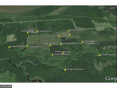 Northwest Koochiching Unorg Terr MN Residential Lots & Land For Sale: $250,000