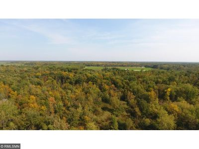 Hinckley Residential Lots & Land For Sale: 41072 Highway 48