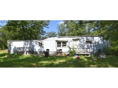 Pillager Single Family Home For Sale: 13421 Pillager Dam Road SW