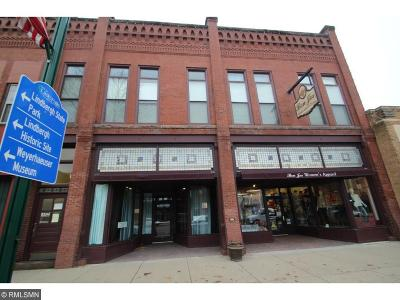 Little Falls MN Commercial For Sale: $500,000