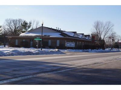 Saint Francis Commercial For Sale: 22970 Butterfield Drive NW