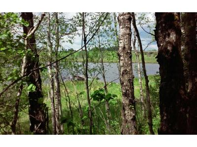 Hibbing, Chisholm Residential Lots & Land For Sale: 10847 92nd