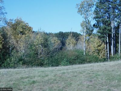 Isanti Residential Lots & Land For Sale: 927 Whiskey Road NW