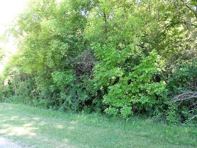 Hager City Residential Lots & Land For Sale: Lot 8 185th Avenue
