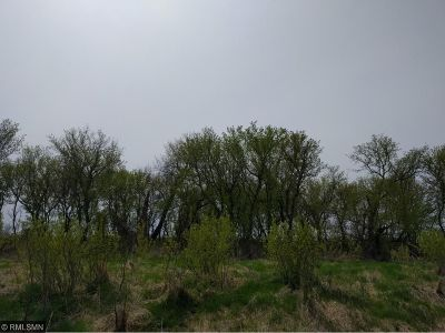 McLeod County Residential Lots & Land For Sale: Xxx 40th Street