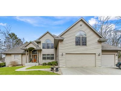Aitkin Single Family Home For Sale: 37894 309th Street