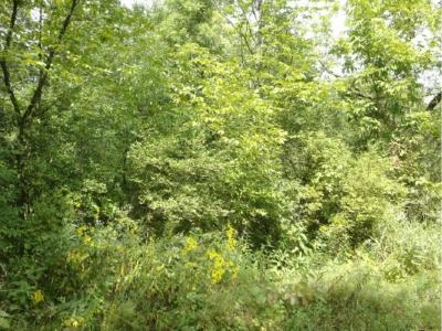 Hinckley Residential Lots & Land For Sale: 20 Fire Monument Road