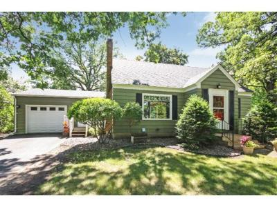 homes for sale in north branch mn