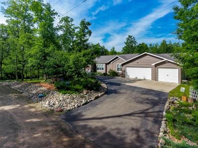 Emily Single Family Home For Sale: 35399 Little Bass Lake Road