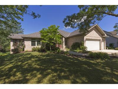 Lakeville Single Family Home For Sale: 17201 Jackson Trail