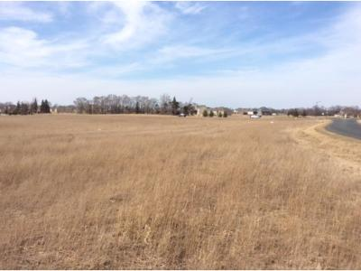 Otsego Residential Lots & Land For Sale: 9475 Naber Avenue NE